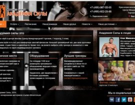 The website of the company «Academy of power»